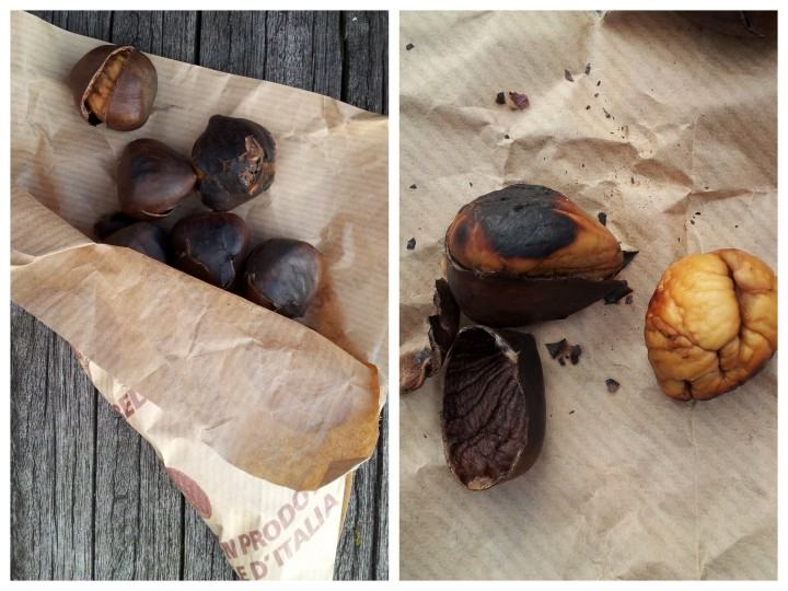 roasted chestnut_collage